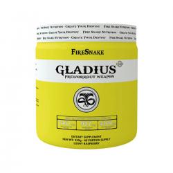 FireSnake GLADIUS 320G